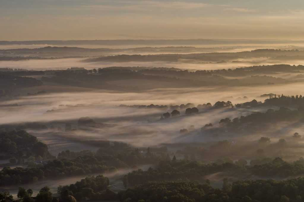 Ashdown Forest Mist