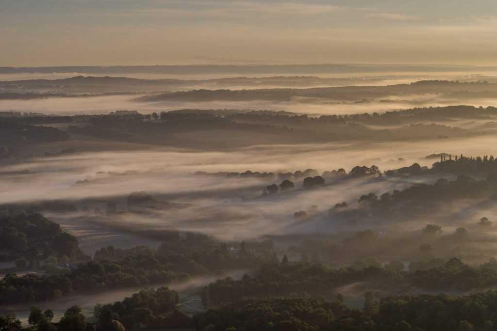 Ashdown Forest Mist