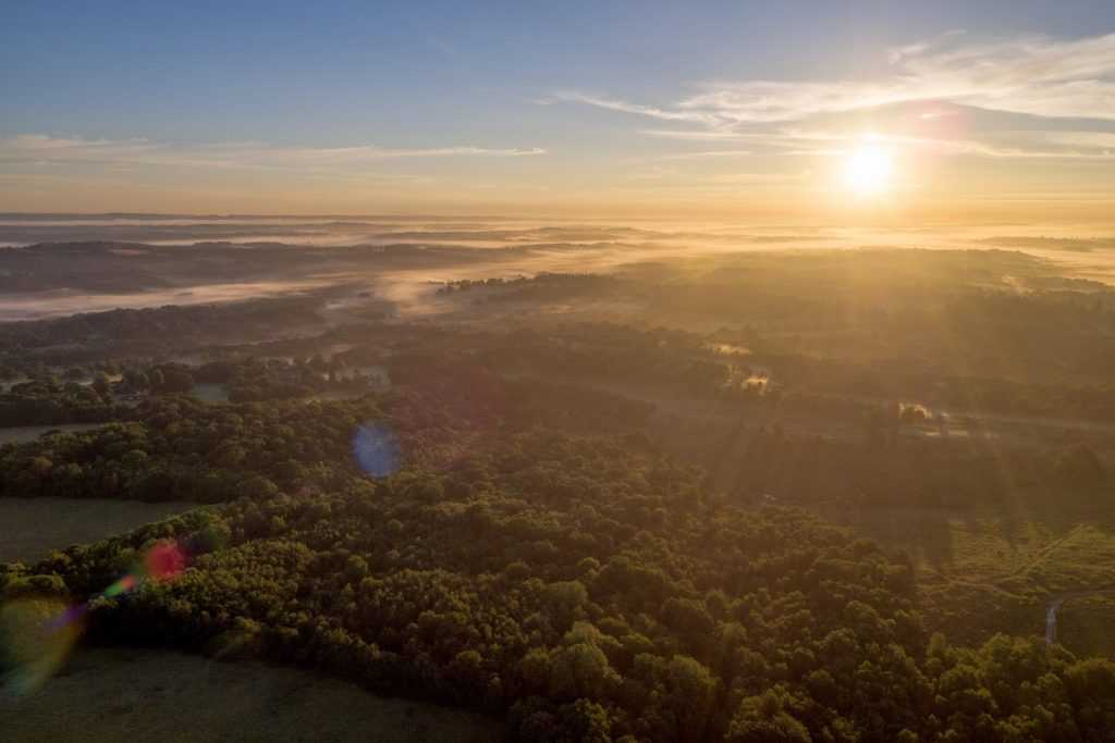 Ashdown Forest Sunrise